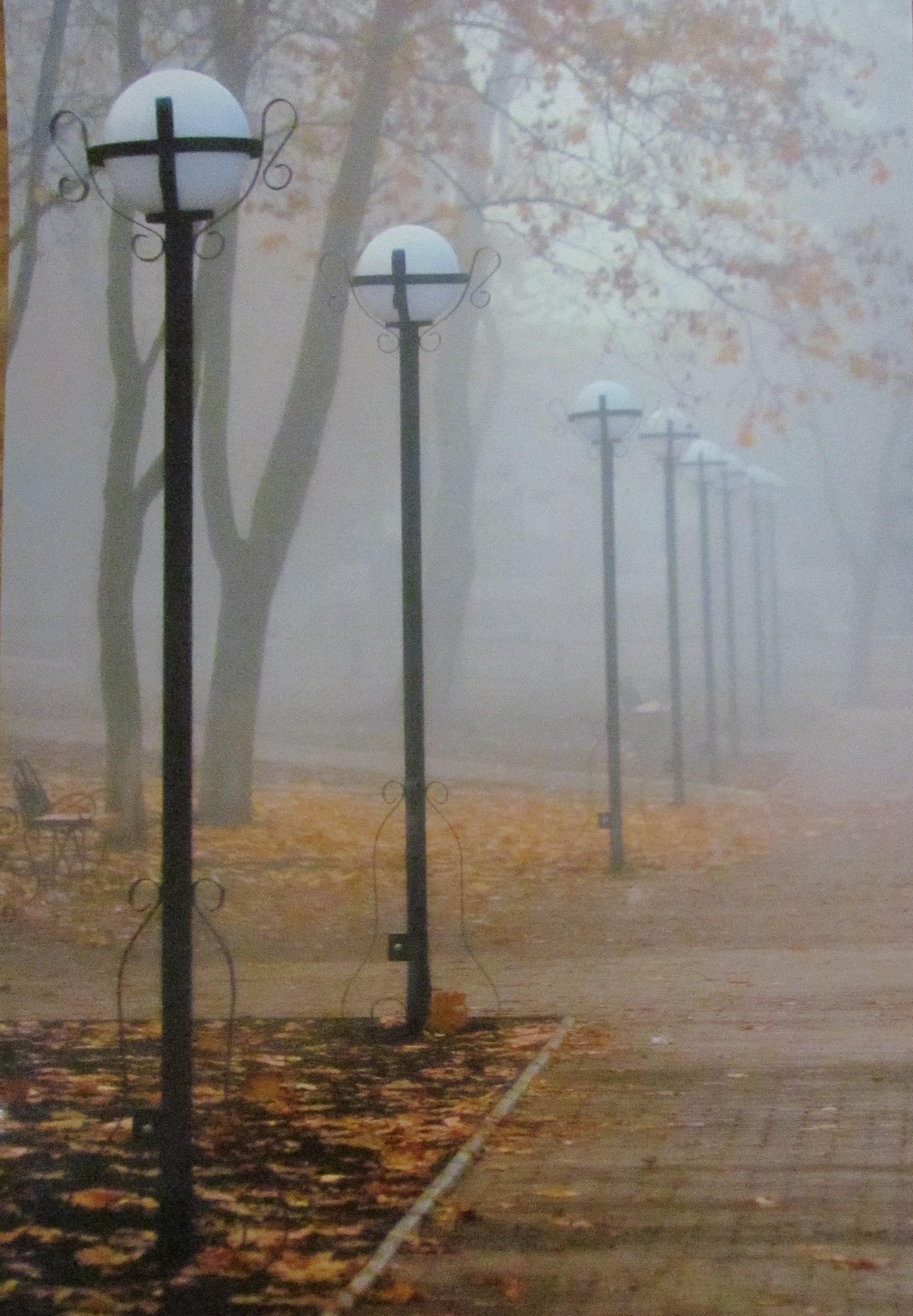 Дмитро Алімкін «Ліхтарі у тумані. Сквер Шевченка»